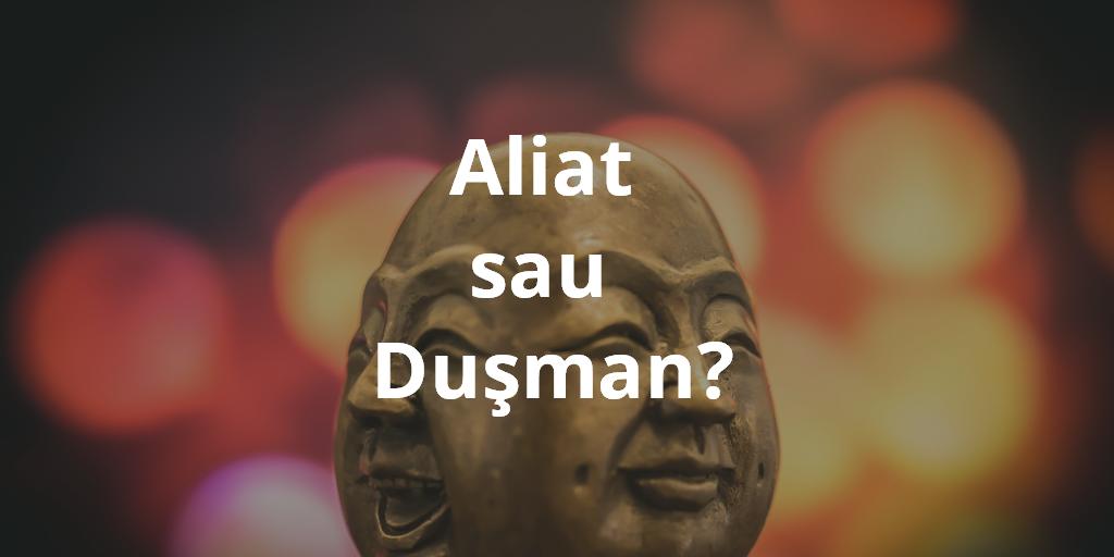 Aliat Sau Dusman