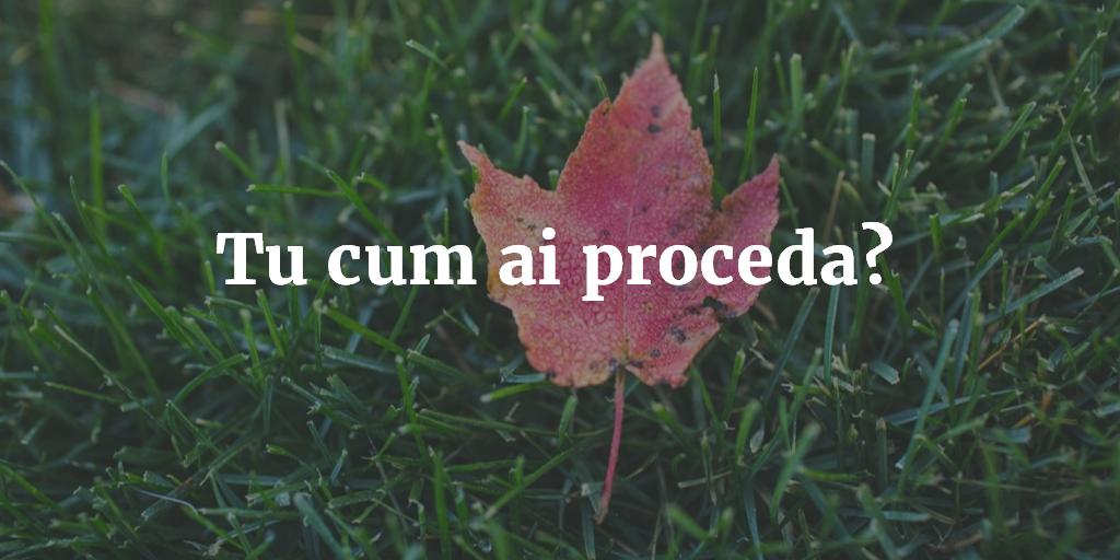 Tu Cum Ai Proceda