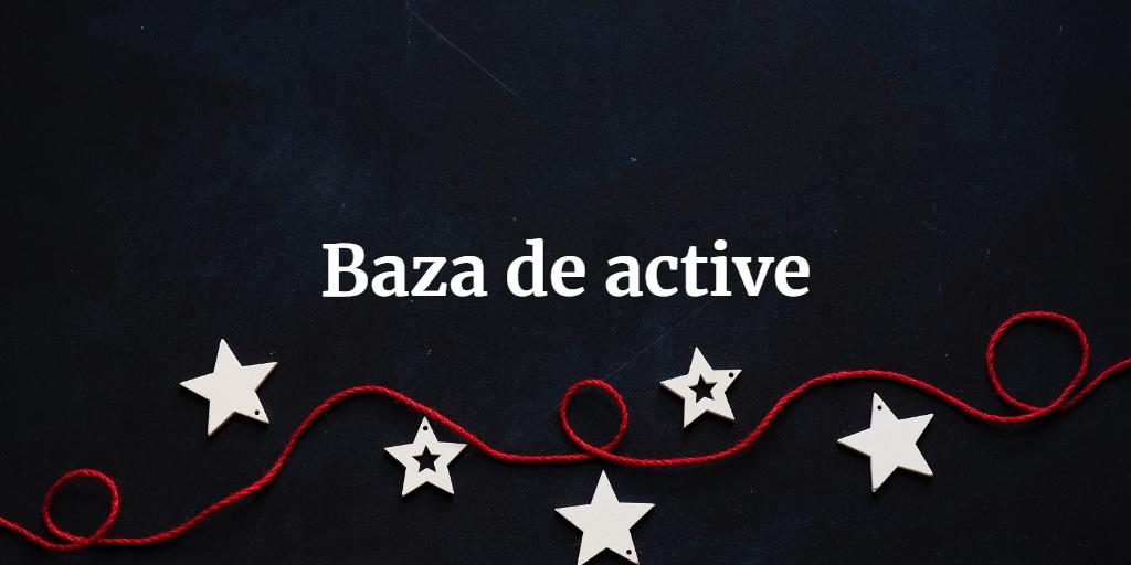 Baza De Active